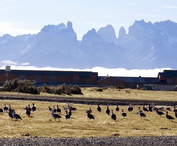 Rio Serrano outdoor with birds