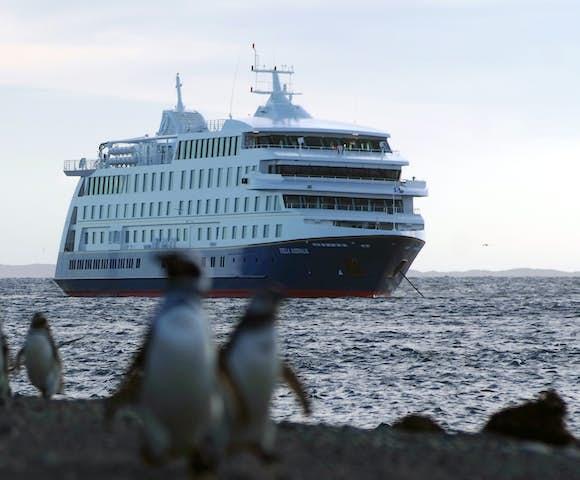 Stella Australis, Patagonian cruising vessel and Magellanic penguins, Patagonia