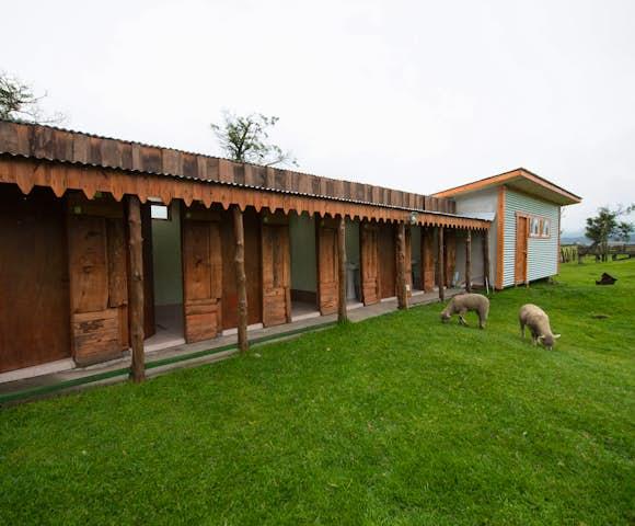 Refugio Darwin