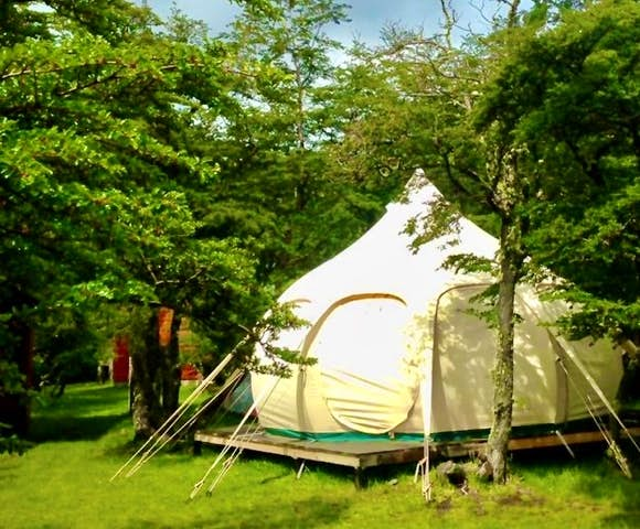 Deluxe tent in the woods at Riverside Camp, Torres del Paine, Patagonia, Chile
