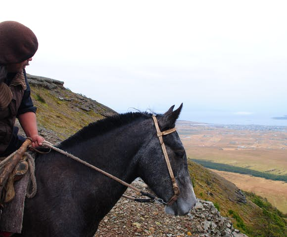 Horse riding at Remota, looking out at the view