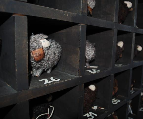 Hotel remota sheep keys
