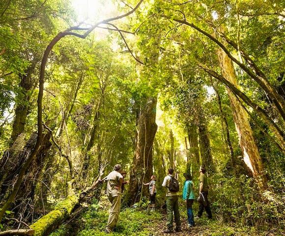 Mari Mari Hotel & Natural Reserve