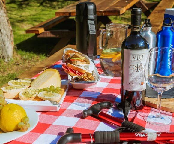 Picnic on excursion at Hotel Grey