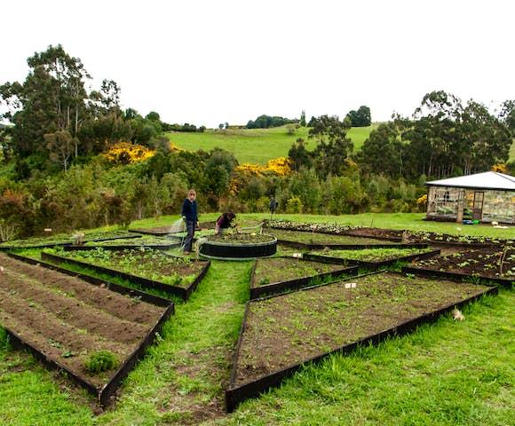 Tierra Chiloé