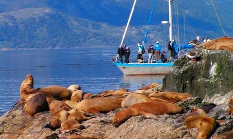 Ushuaia nautical-sailing