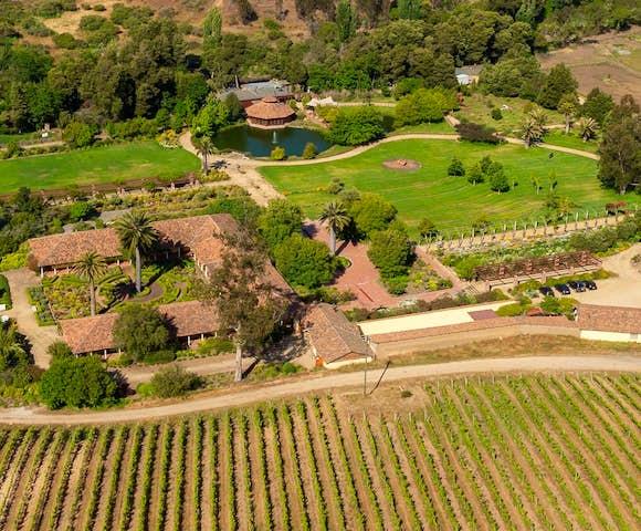 Aerial views of Matetic Vineyard, Chile