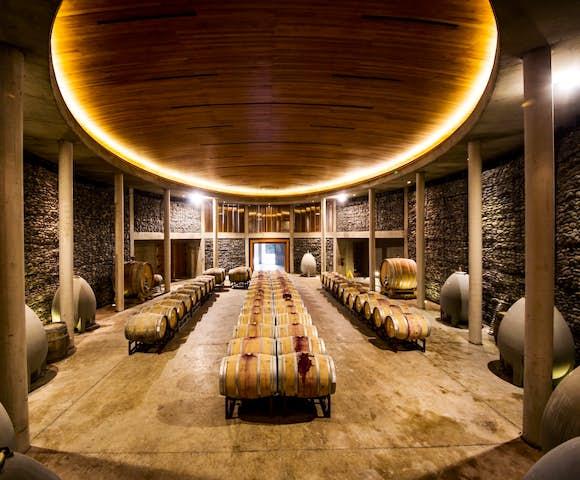 The cellars at Matetic Vineyard, Chile