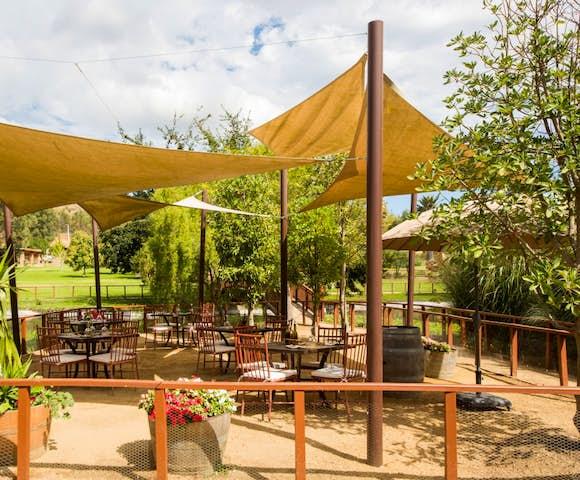Relaxing in the vineyard surroundings at Matetic Vineyard Chile