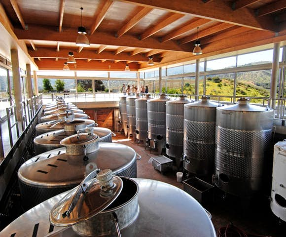 Wine making at Matetic Vineyard, Chile