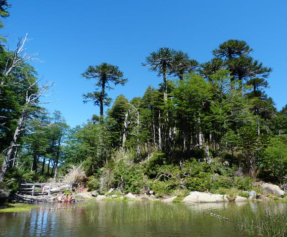 Chilean Lakes Hiking