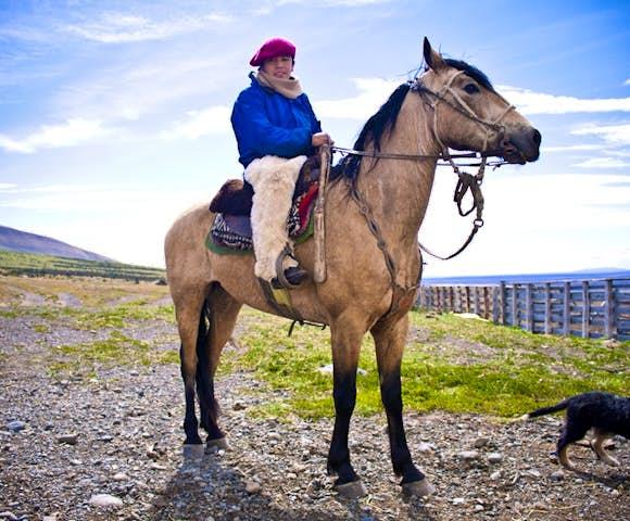 Tierra horse